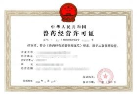 首要经营许可证代办